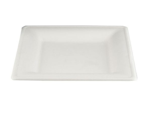 10 Inch Bagasse Square Plates