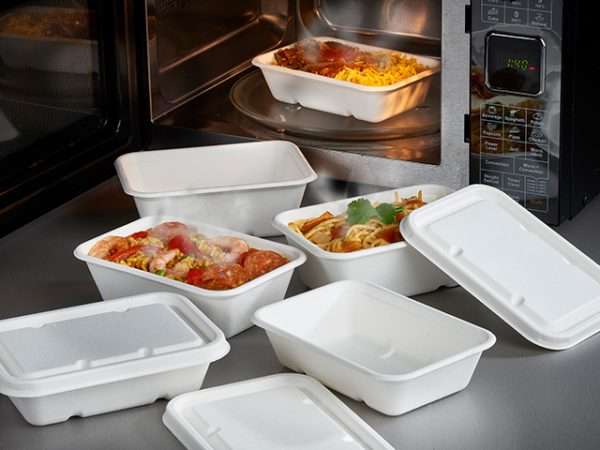 Bagasse rectangular food containers and lids