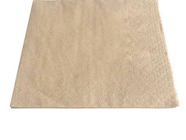 2ply Recycled Tissue Napkin