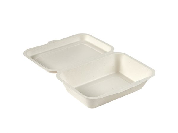 6 x 4 inch bagasse clamshell food box