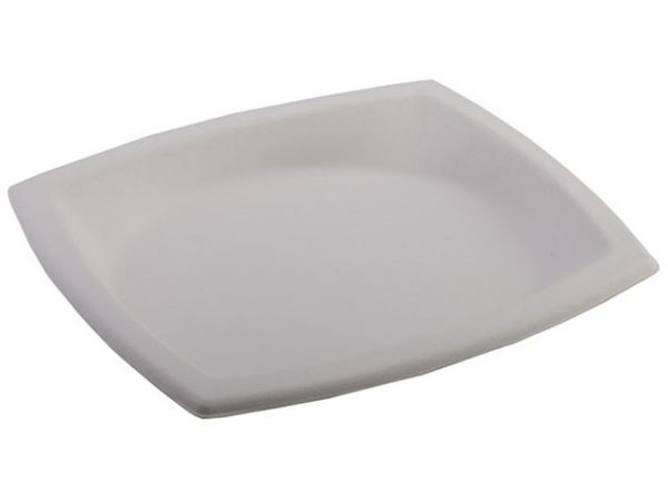Square Oval Bagasse Plates