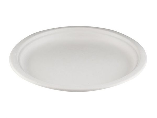 10.25 Inch Bagasse Plates