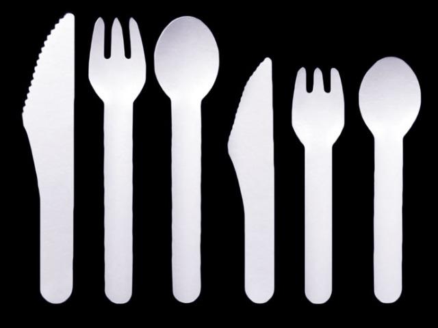 Paper Cutlery Range